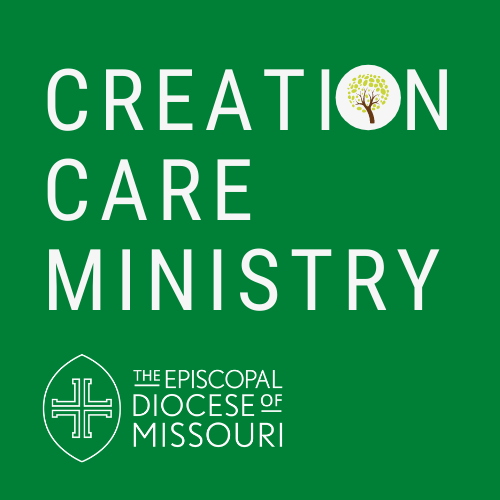 Creation Care Ministry Takes Root in the Diocese of Missouri